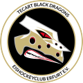 TecArt Black Dragons