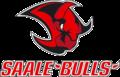 Logo Saalebulls